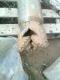 IMG0387A.jpg